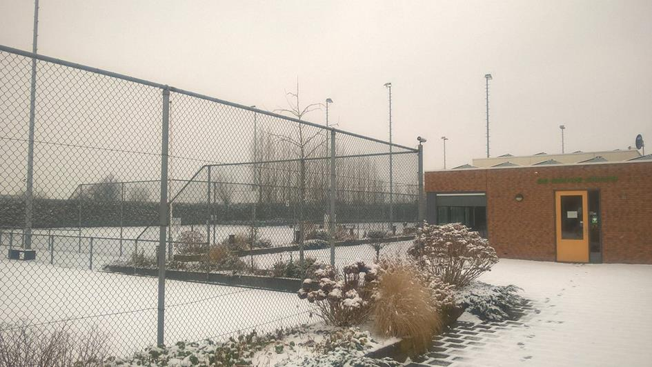 park winter (2).jpg